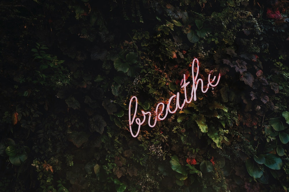Neon sign in leaves that reads breathe Strees & Anxiety CBD Oils